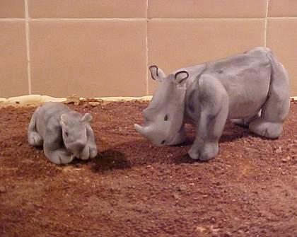 White rhino turns 3