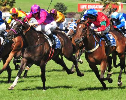 A Bluffer's Guide to the Melbourne Cup in Auckland