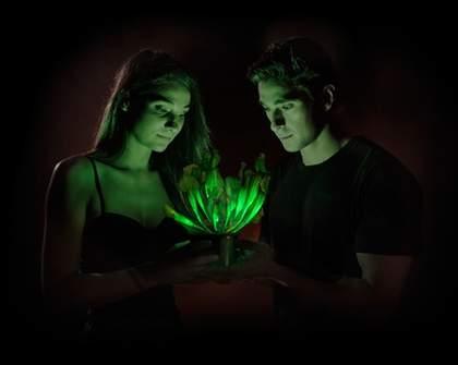Plants: The Lightbulbs of the Future?