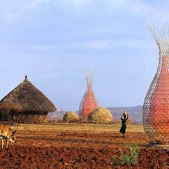 Ethiopia's WarkaWater Towers Gather Drinking Water from the Air