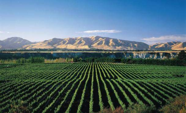 2014 Kiwi and Aussie Winemakers Tour