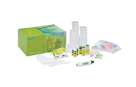 lse_pglo_bacterial_tran_kit