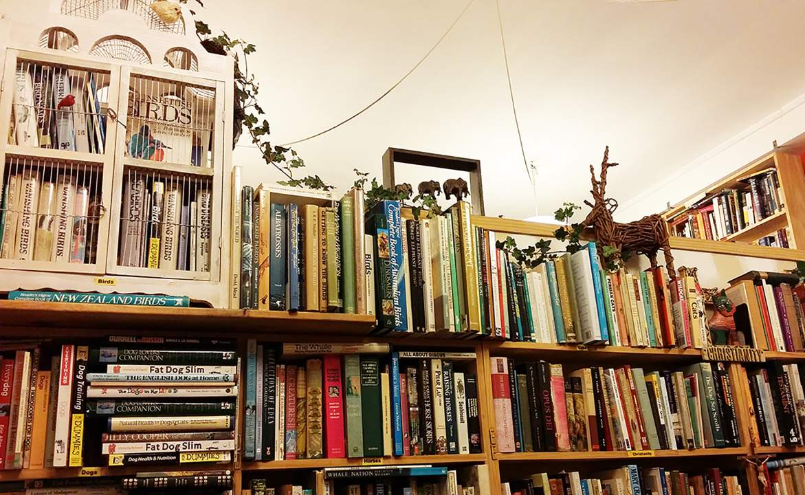 The Eight Best Bookstores in Wellington