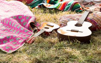 The Dos and Don'ts of Hosting a Backyard Music Festival