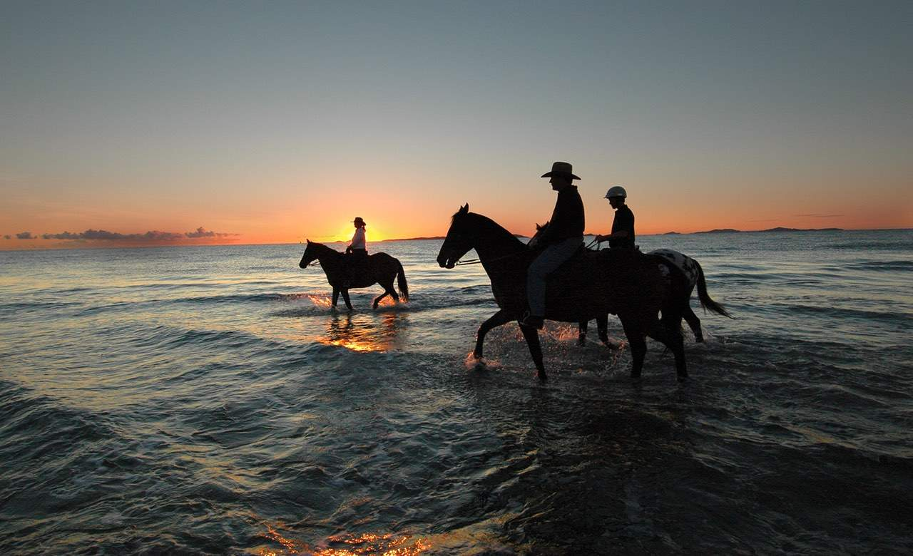 The Ten Best Places To Go Horse Riding Near Sydney