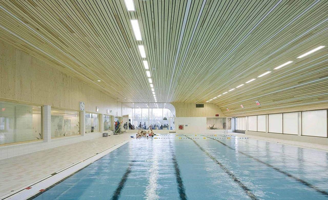 De-Heuvelrand-Voorthuizen-swimming-pool