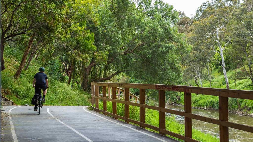 The Best Bike Rides In and Around Melbourne