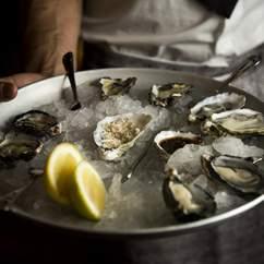 The Morrison Oyster Festival 2016