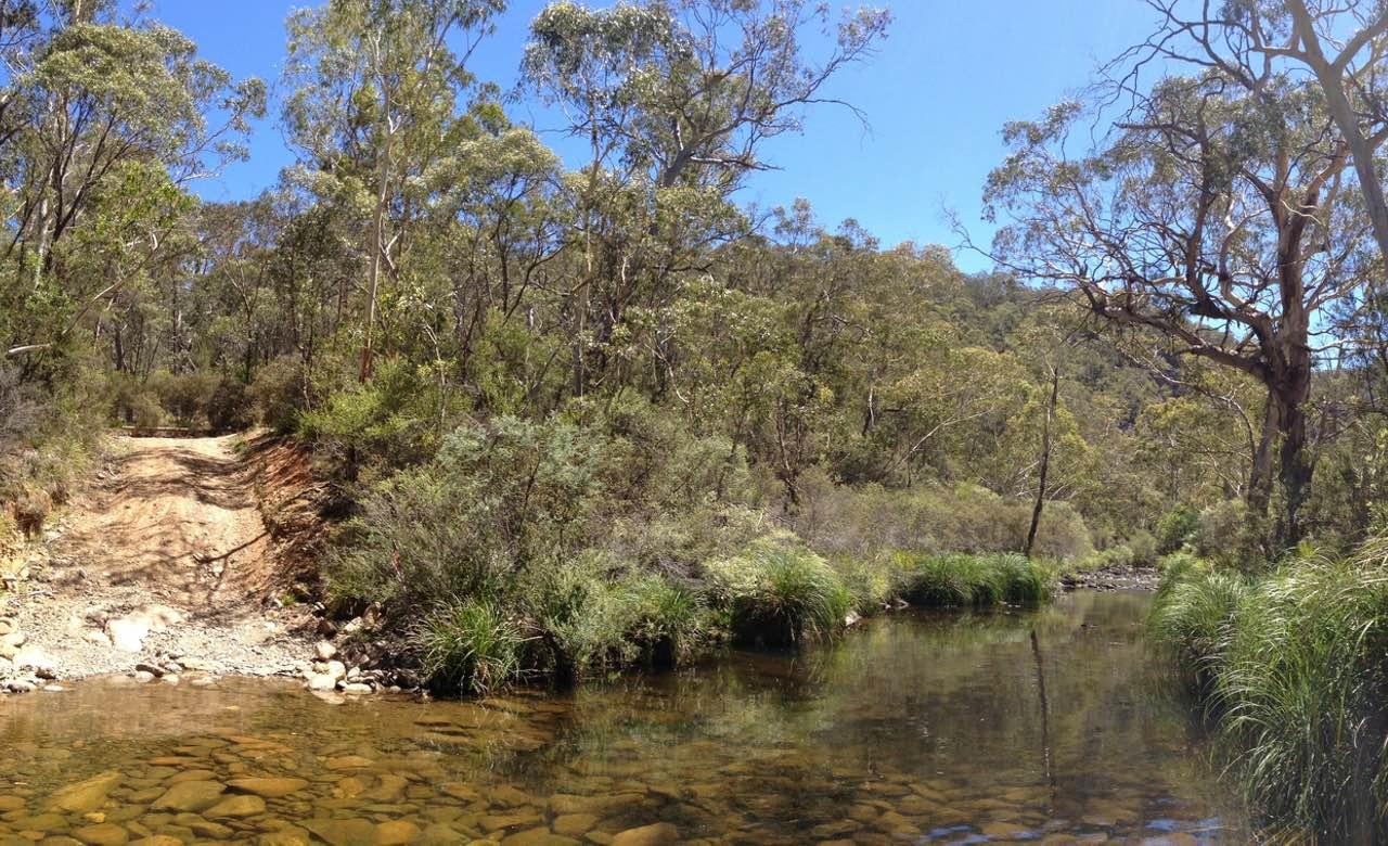 Kowmung-River-NSW-Flickr