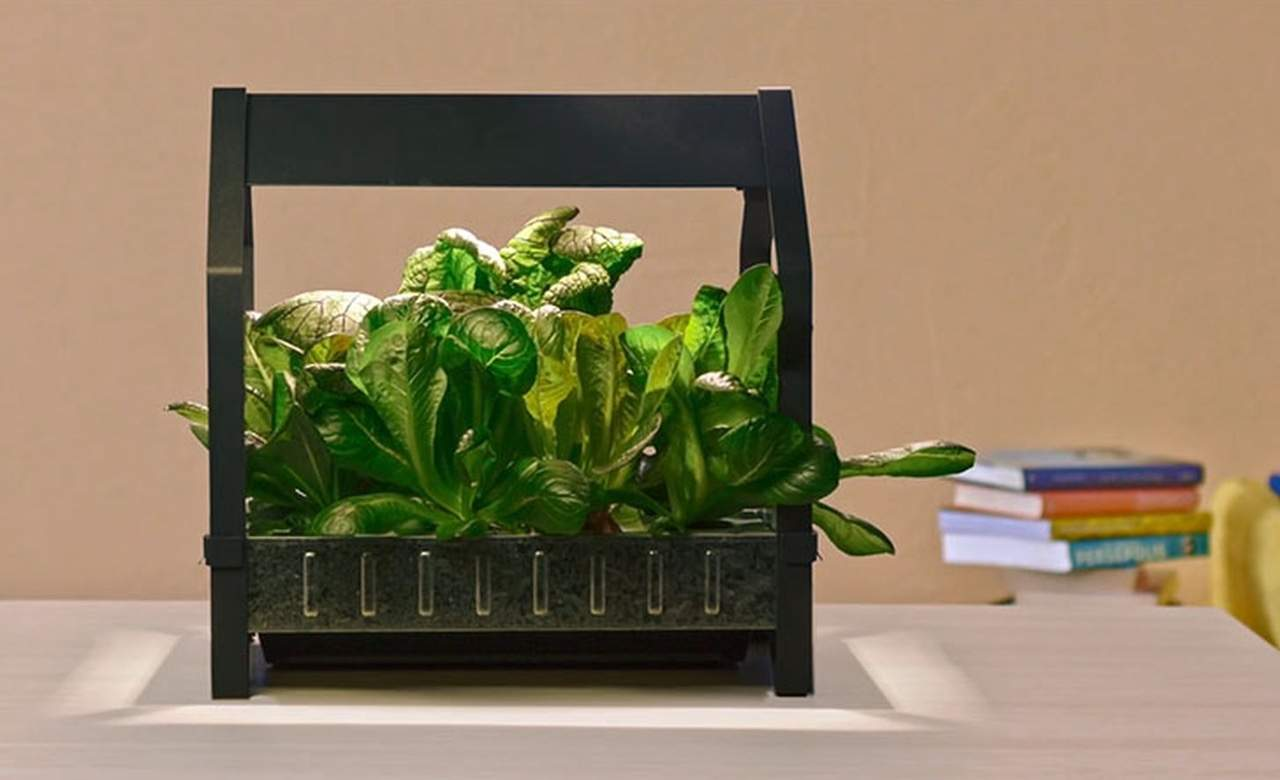 IKEA Is Now Selling Hydroponics to Let You Grow an Indoor Garden
