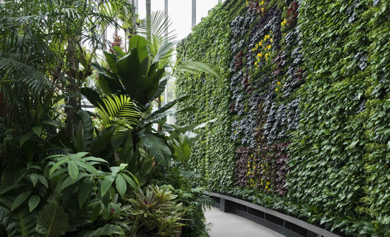 Gentil Five Unexpected Things To Do In The Royal Botanic Garden Sydney This Winter    Concrete Playground | Concrete Playground Sydney