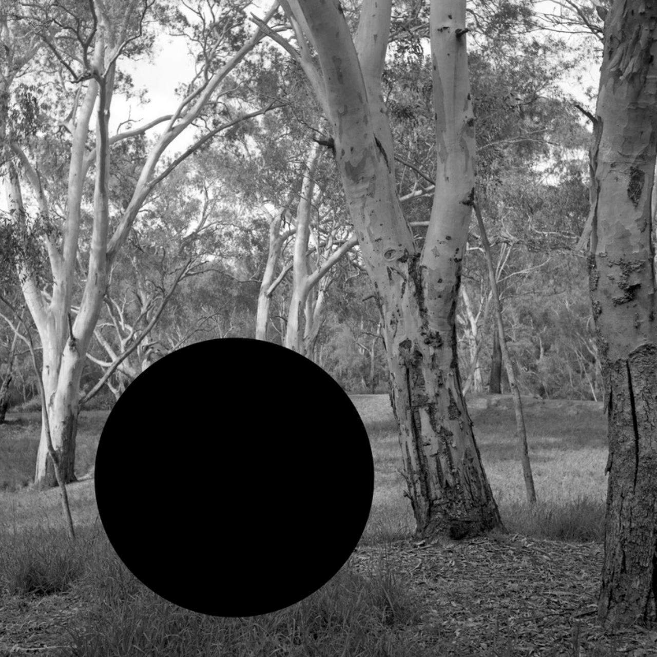 James Tylor, (Erased Scenes) From an Untouched Landscape #5 (2014), Artbank collection.