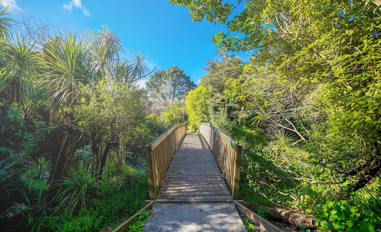 The Ten Best Inner City Running Trails in Auckland