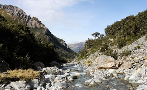 A Guide to the Breathtaking Nature in New Zealand's Christchurch Region