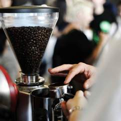 Auckland Coffee Festival
