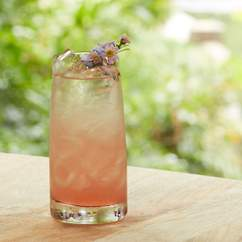Project Botanicals Pop-Up Garden Bar