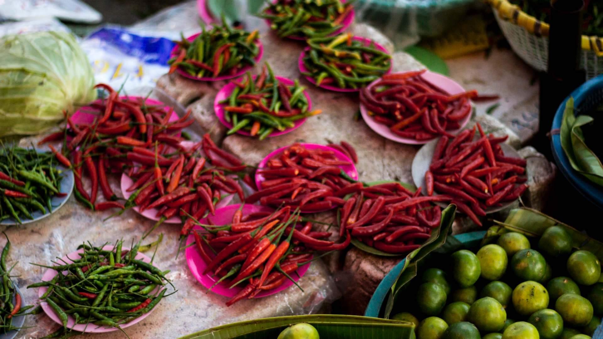 Herb & Chilli Festival