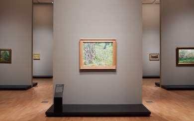 A Look Inside the NGV's Blockbuster Van Gogh Exhibition