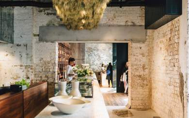A Guide to Sustainable Restaurants in Auckland