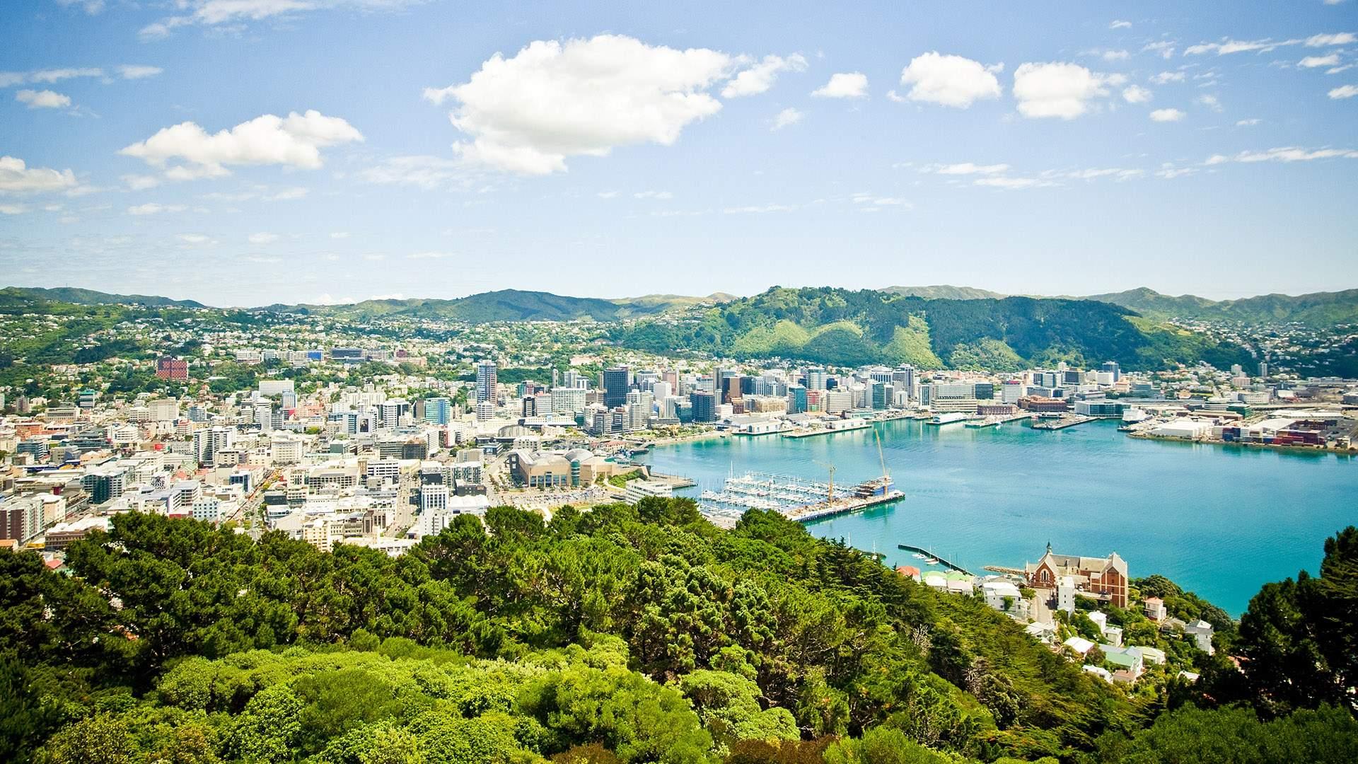Ten Spectacular Walks to Tick Off Your Bucket List in and Around Wellington