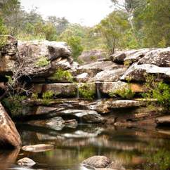 Dharawal National Park Summer Series Sensory Walks