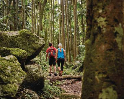 Five Epic Multi-Day Hikes to Conquer Near Brisbane