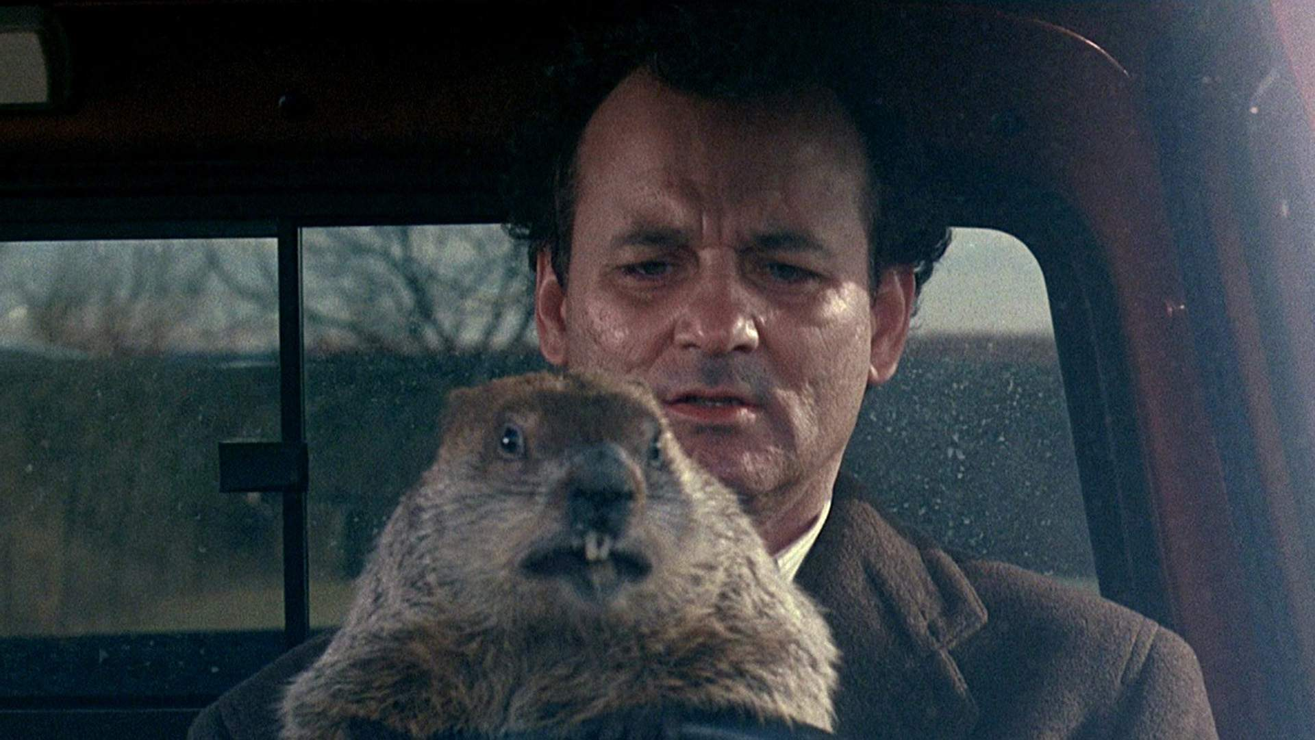 'Groundhog Day' Is Getting a Virtual Reality Sequel