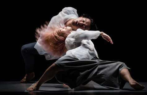 SUPERCELL: Festival of Contemporary Dance Brisbane 2018