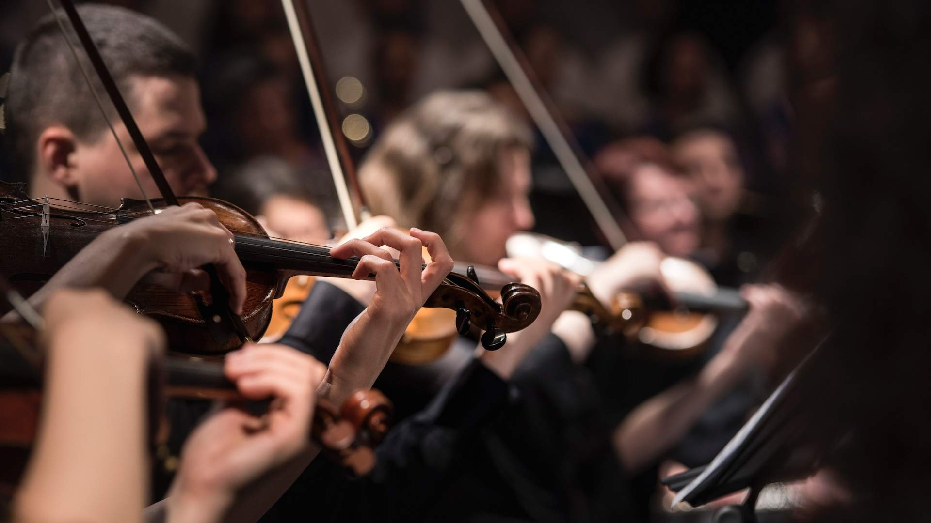 The New Zealand Symphony Orchestra Is Looking to Live-Stream Cancelled Performances
