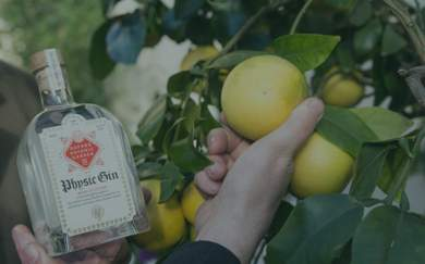 Oxford University Is Launching Its Own Gin