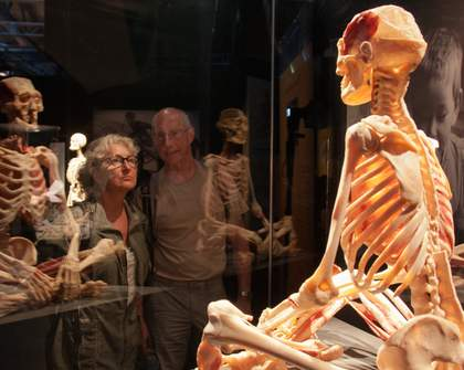 A Huge Exhibition of Real Human Bodies Is Coming to Melbourne