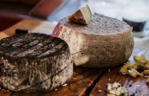 Mould: A Cheese Festival 2020 — POSTPONED