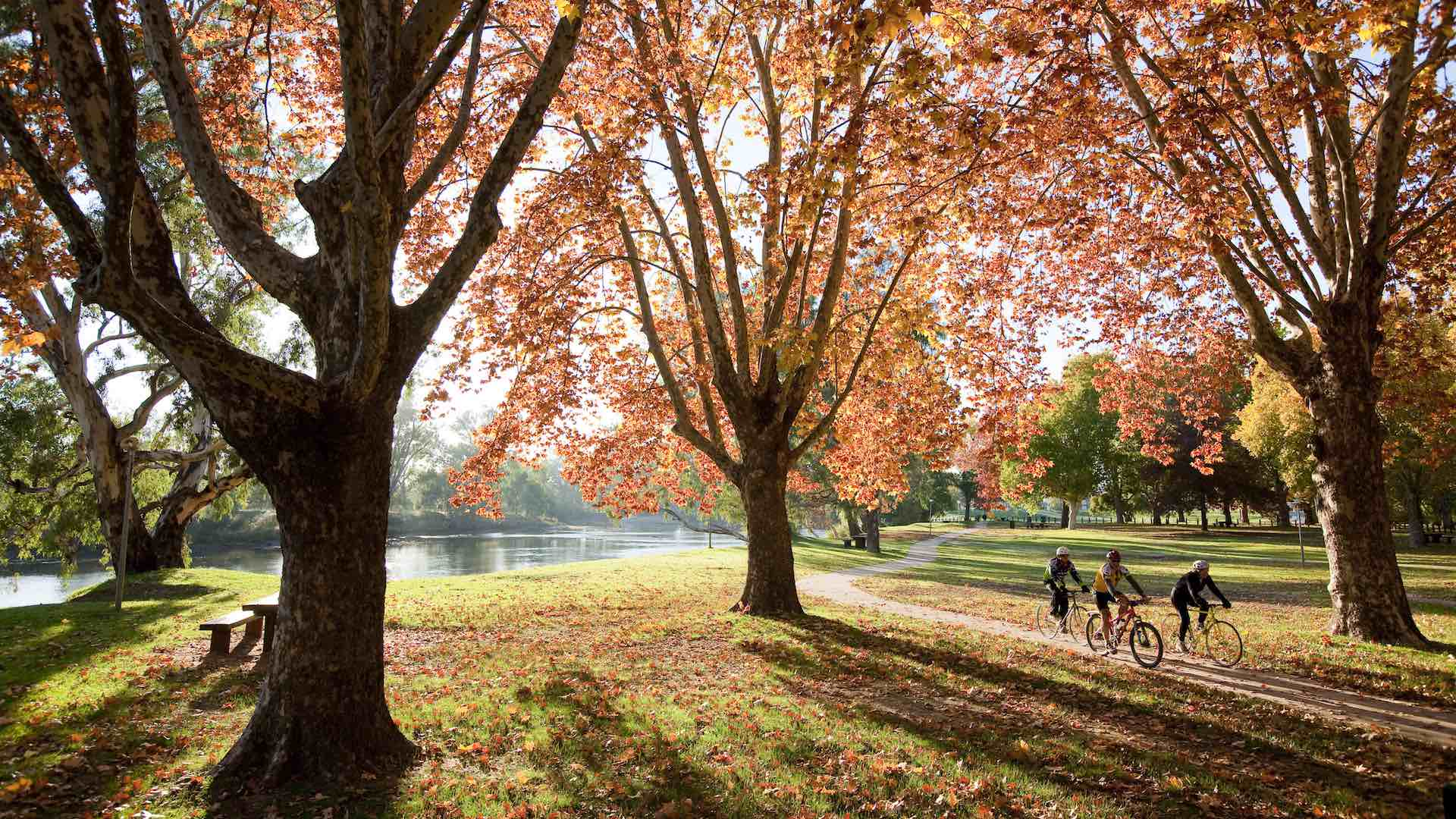 Five Ways to Enjoy the Colours of Autumn in the Murray Region