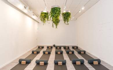 All for One Is Yarraville's New Greenery-Filled Full-Service Health and Wellness Studio