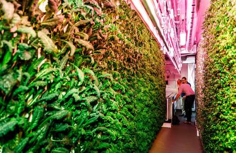 Brisbane's Eat Street Is Now Home to an Aussie-First Vertical Hydroponic Farm