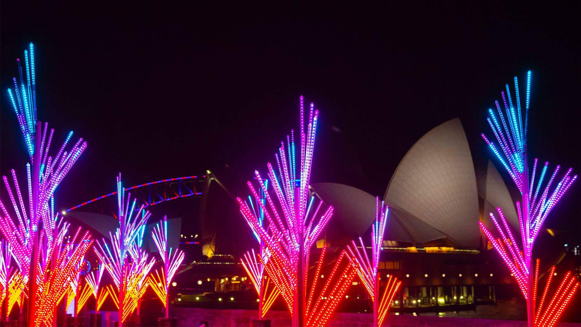 Sixteen Glowing Installations Have Popped Up in the Royal Botanic Garden for Vivid Sydney 2018