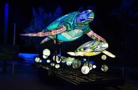 SYDNEY'S TARONGA ZOO HAS BEEN SPECTACULARLY ILLUMINATED FOR THIS YEAR'S VIVID FESTIVAL