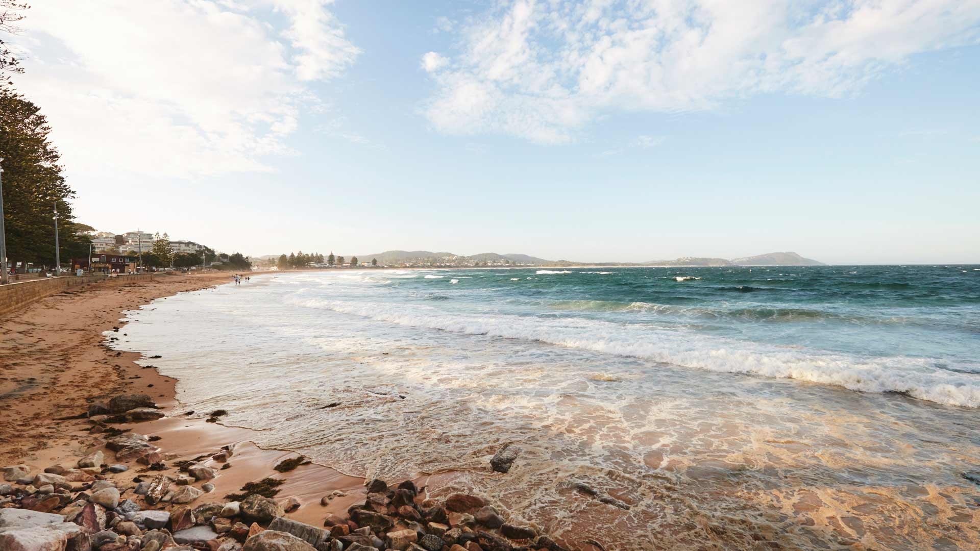 NSW Could Soon Be Home to a Huge New Marine Park Stretching Between Newcastle and Wollongong