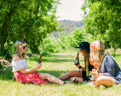 We're Giving Away a Tour Package to Peninsula VineHop Festival