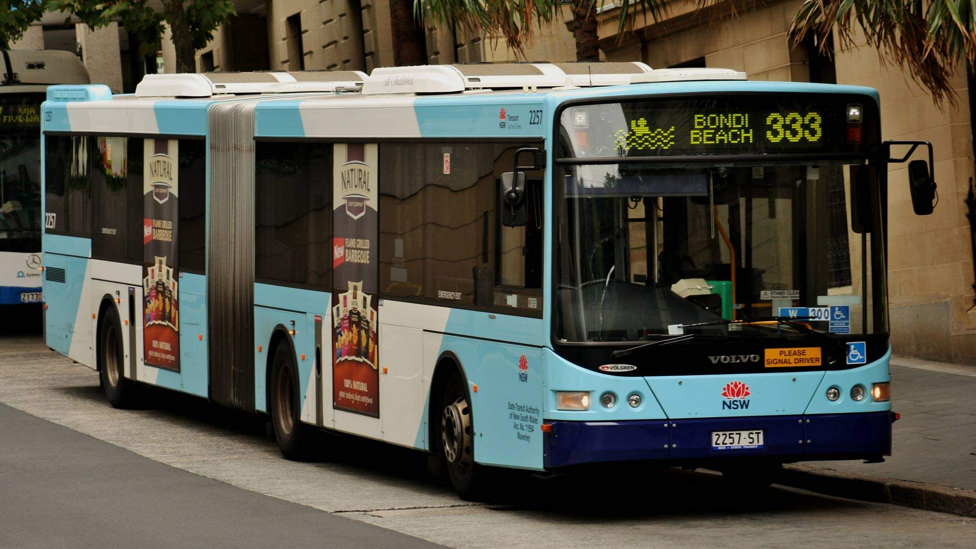 A Heap of New Bondi Beach-to-City Bus Services Will Be Added Next Month