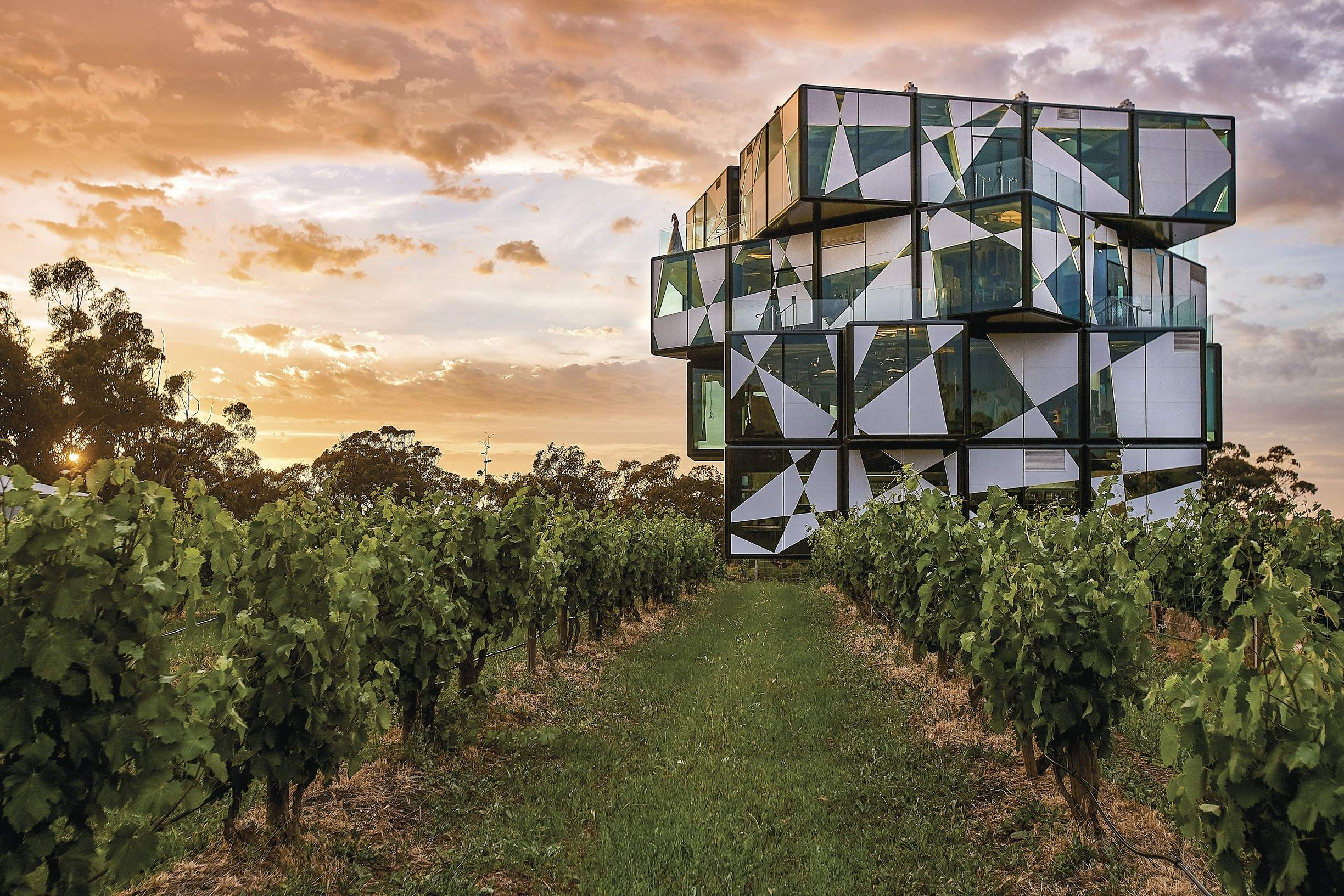 McLaren Vale villa and d'Arenberg winery experience