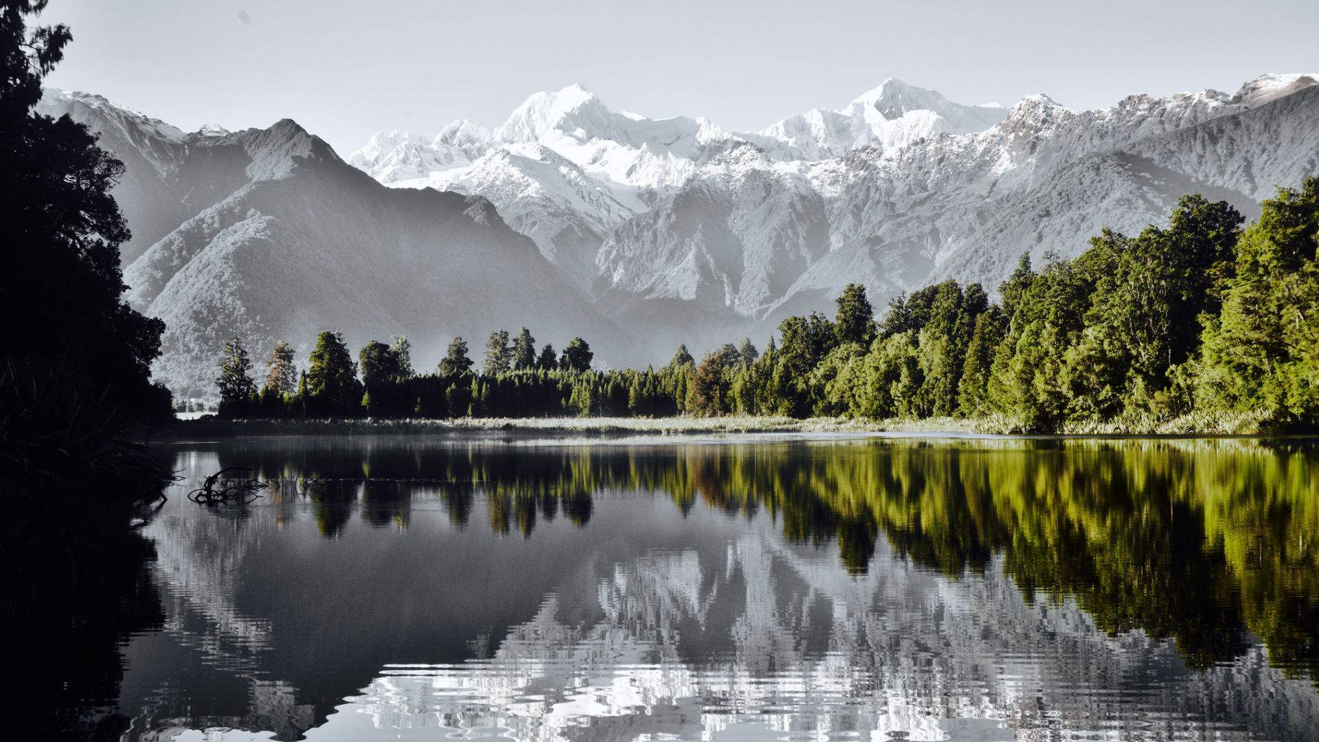 South Island: TranzAlpine Explorer