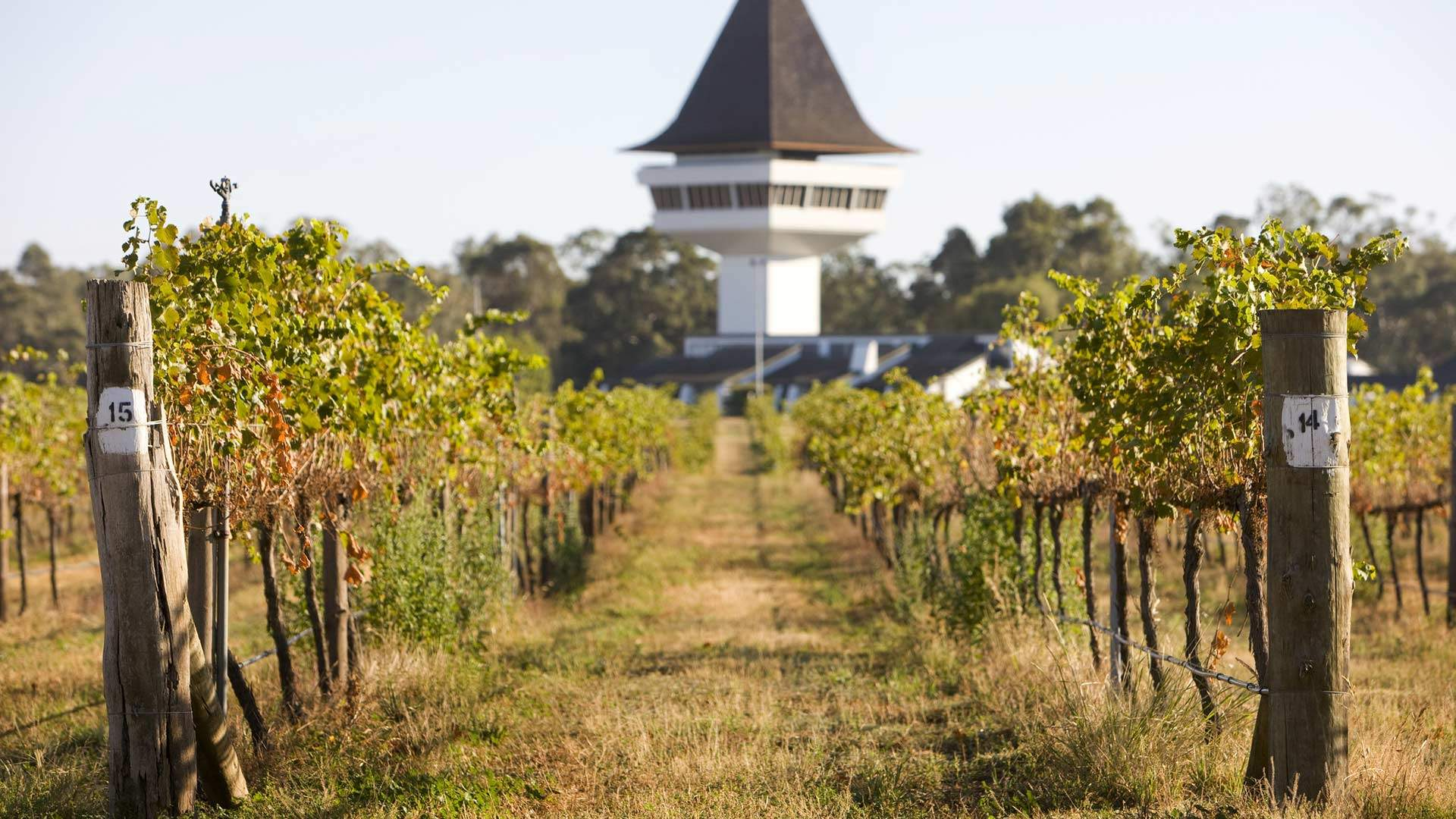 An Art Lover's Weekend Guide to Nagambie and Its Surrounds