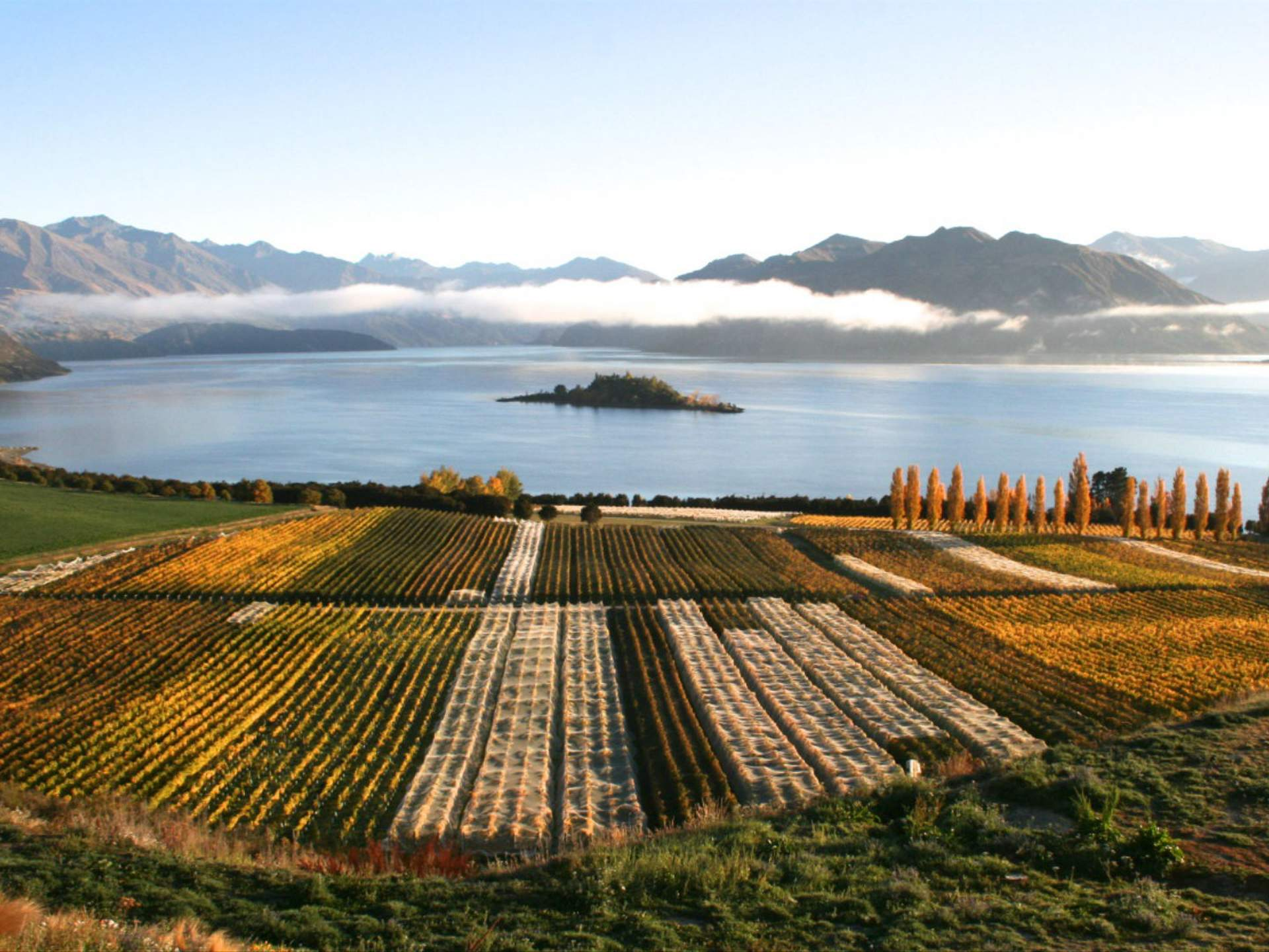 Five Wineries to Visit on New Zealand's South Island If You Are or Want to Be a Wine Expert - Concrete Playground | Concrete Playground Brisbane