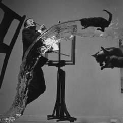 Dali and the Surrealists