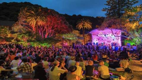 The Best Free Events to Check Out in Wellington This Summer