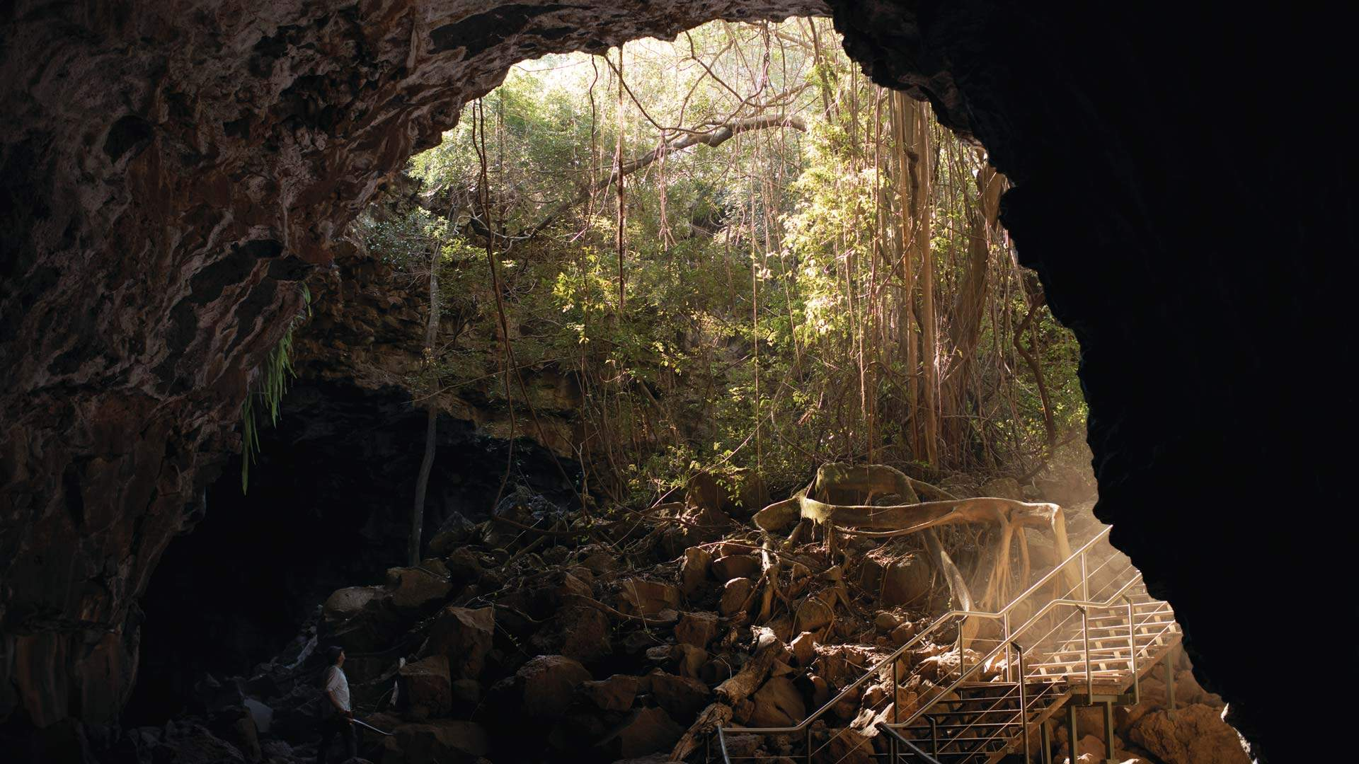 The Five Best Caves to Visit Near Brisbane