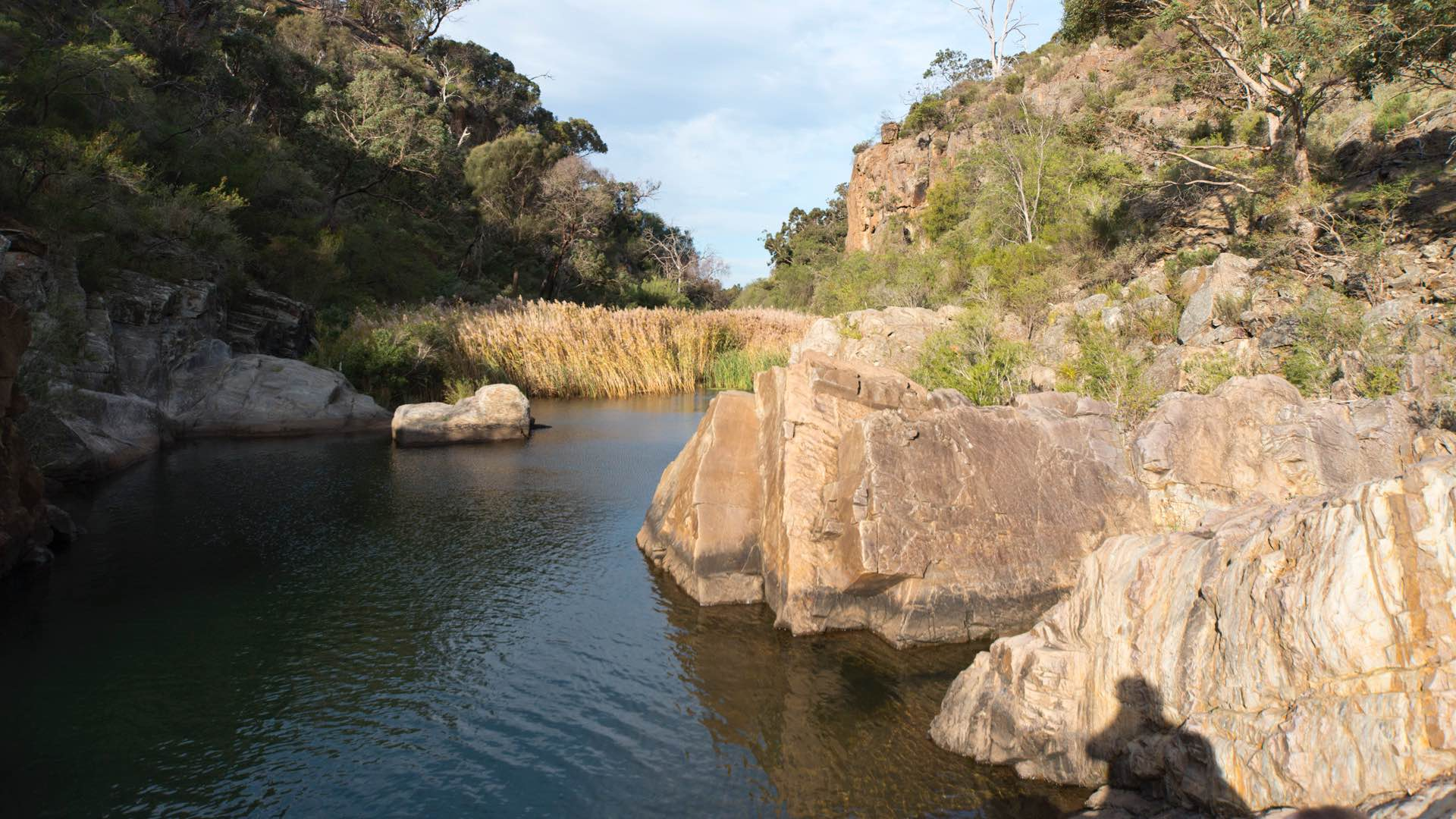 The Best Rivers for Swimming In Near Melbourne