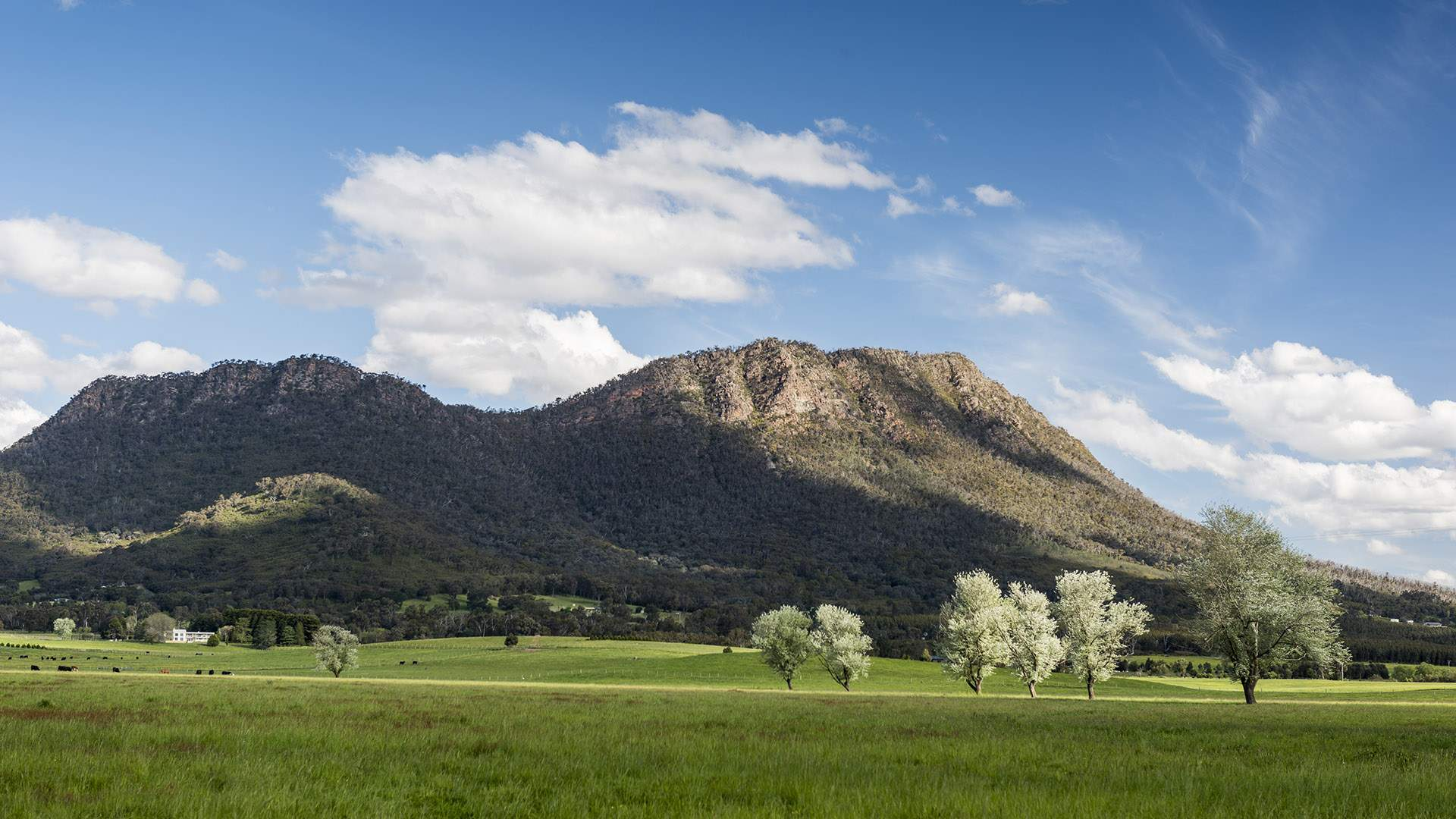 Five Epic Mountain Walks Near Melbourne to Try this Season