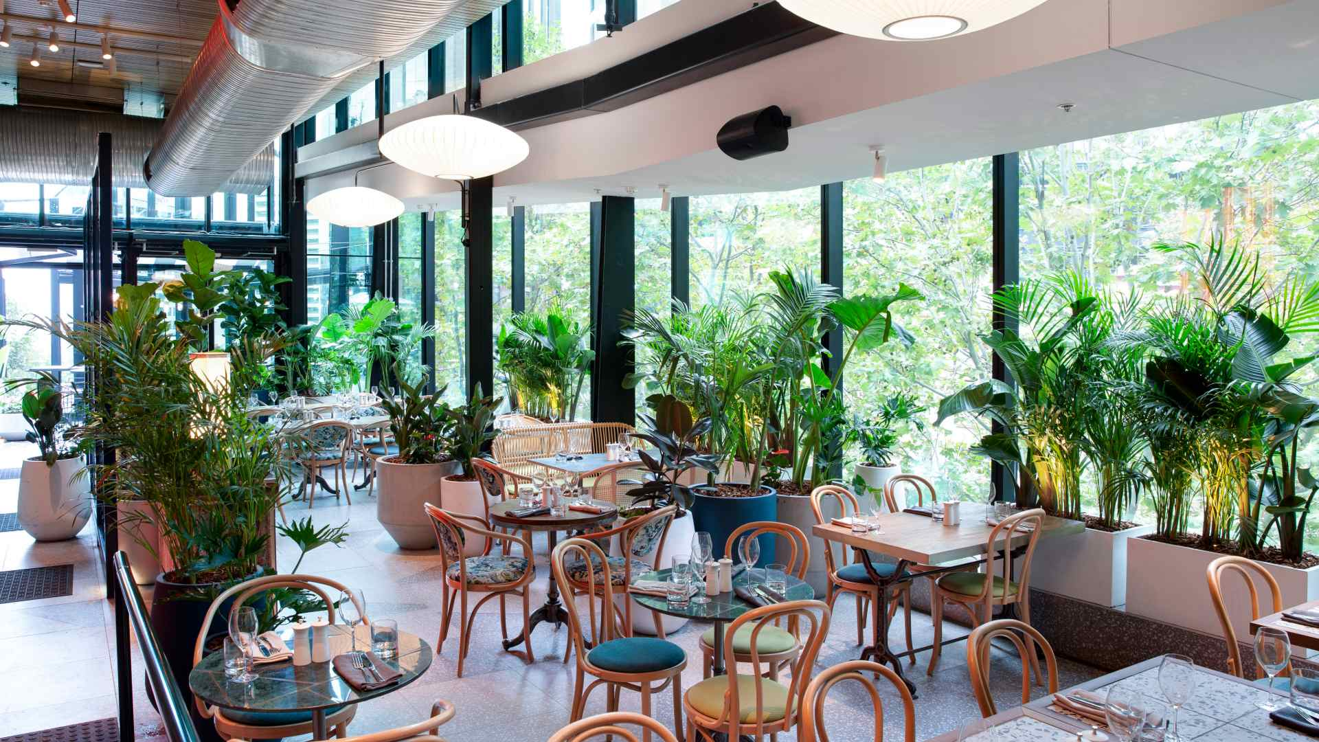 Eight Conveniently Located Restaurants and Bars to Hit Up in North Sydney